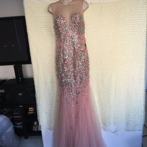 Terani Couture Illusion Mermaid Gown PINK Sz 6 #70
